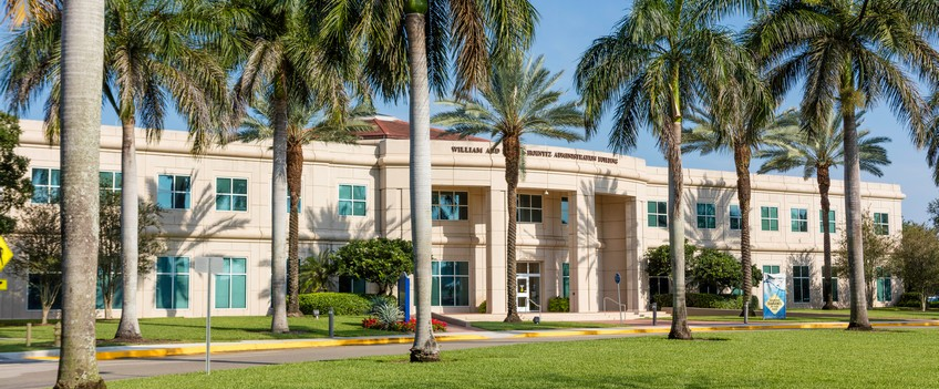 Faculty and Staff Directory | NSU College of Arts